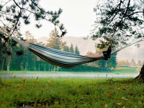 森の湖畔でハンモックで休息