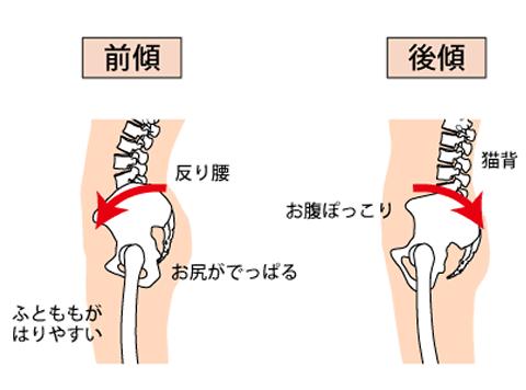骨盤が前傾後傾するイメージ