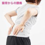 猫背からの腰痛